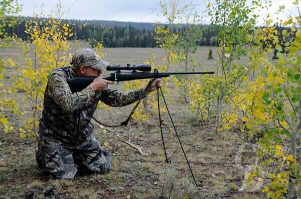 Bipod or Shooting Sticks: What's Better?