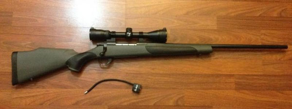 weatherby vanguard series 2